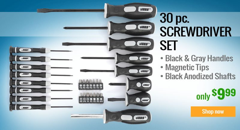 JEGS 30 Piece Screwdriver Set