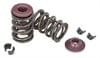 Amundsen-Research-Valve-Springs