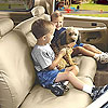 Covercraft SS7381PCCH - Covercraft SeatSaver Seat Covers