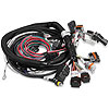 Holley 558-107Holley Late Model HEMI EFI Harnesses