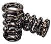 Chevrolet-Performance-Valve-Springs