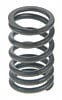 Sealed-Power-Valve-Springs