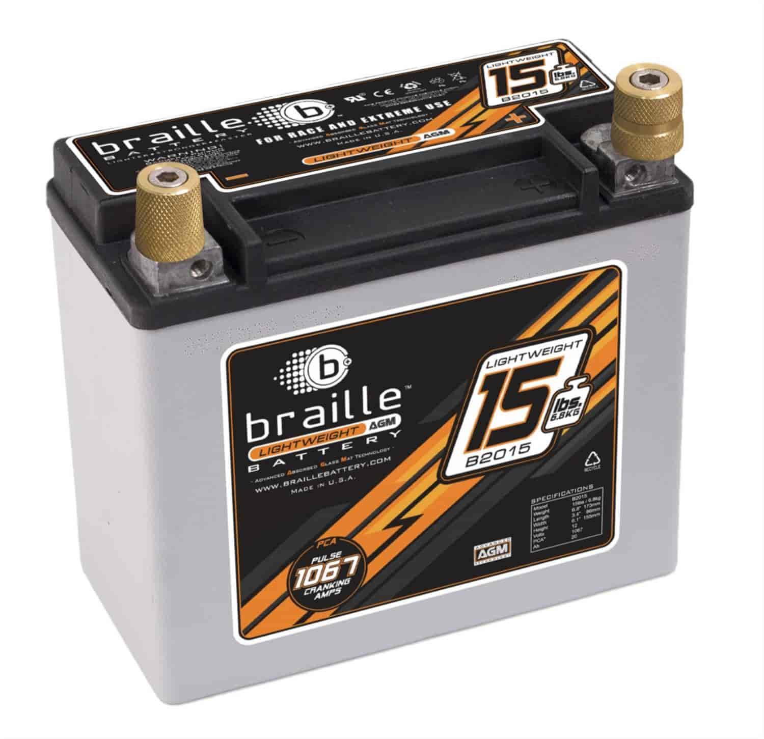 Braille Battery B2015