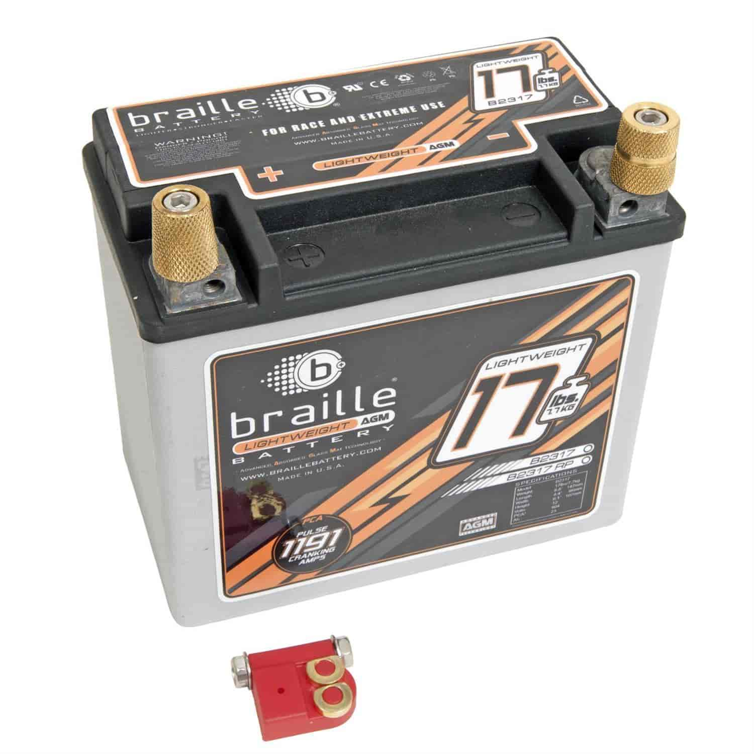 Braille Battery B2317