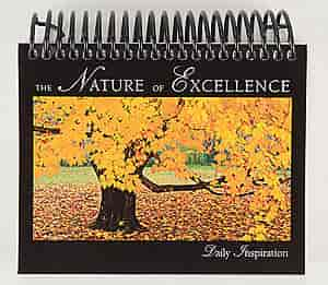 Cornerstone Leadership Noecal001 The Nature Of Excellence Daily