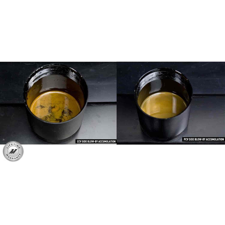 mishimoto bcccam416pbk baffled oil catch can jegs. Black Bedroom Furniture Sets. Home Design Ideas