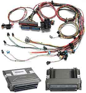 painless performance products 60008 efi wiring harness 1997 2004 gm ls1 ls6 jegs