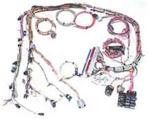 painless performance products efi wiring harness gm efi wiring harness 2000 02 gm vortec 4 8 5 3 6 0l painless performance products 60219