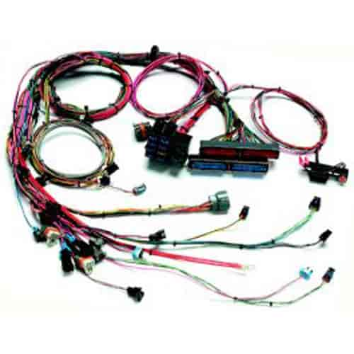 painless performance products 60520 efi wiring harness 2005 06 gm rh jegs com Ford Wiring Harness Radio Wiring Harness