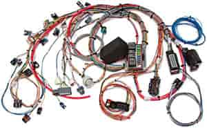Painless Performance Products 60524 - Painless GM Fuel Injection Wiring Harnesses