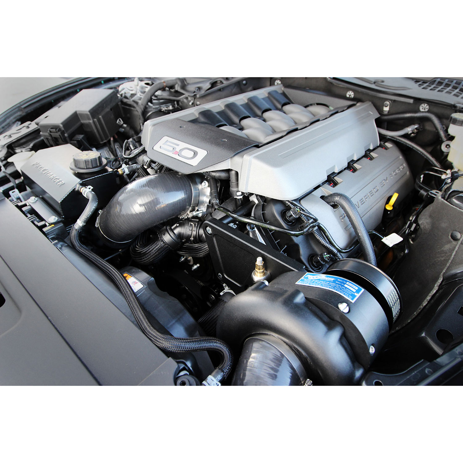 Mustang S550 Procharger Installation: Paxton 1FW212P1XBBH ProCharger Stage II Intercooled